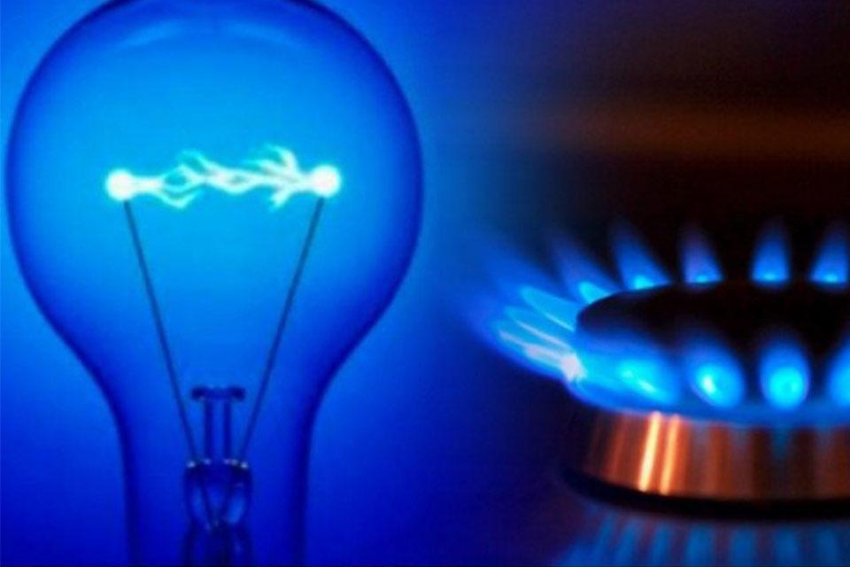 ბიზნესპარტნიორი - ლარის კურსი და მისი გავლენა ელექტროენერგიის ტარიფზე