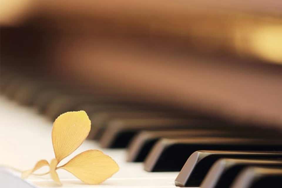 სი ბემოლ ვიტამინი - მუსიკა - ყველაფერია