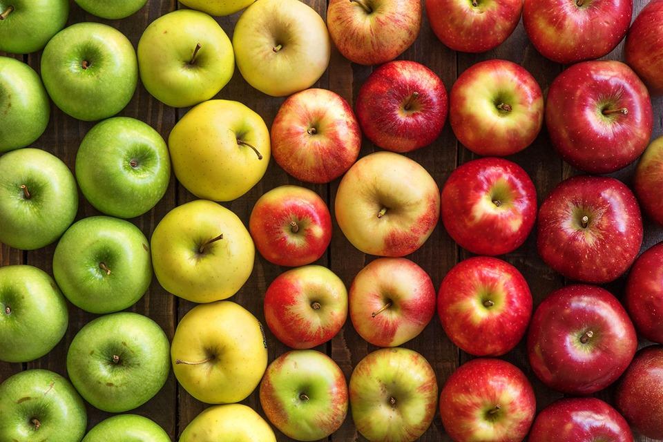 აგვისტო-დეკემბერში საქართველოდან ექსპორტირებული ვაშლის მოცულობა, წინა წლის ანალოგიურ პერიოდთან შედარებით, 14-ჯერ გაიზარდა