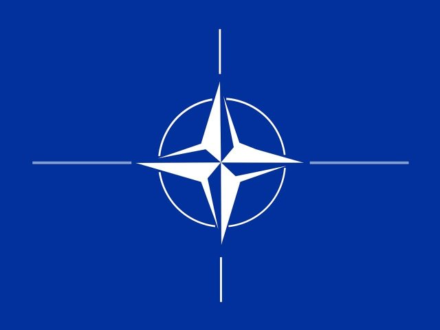 Ukrainian media reports: International experts call on NATO to ensure Georgia and Ukraine get MAP as soon as possible