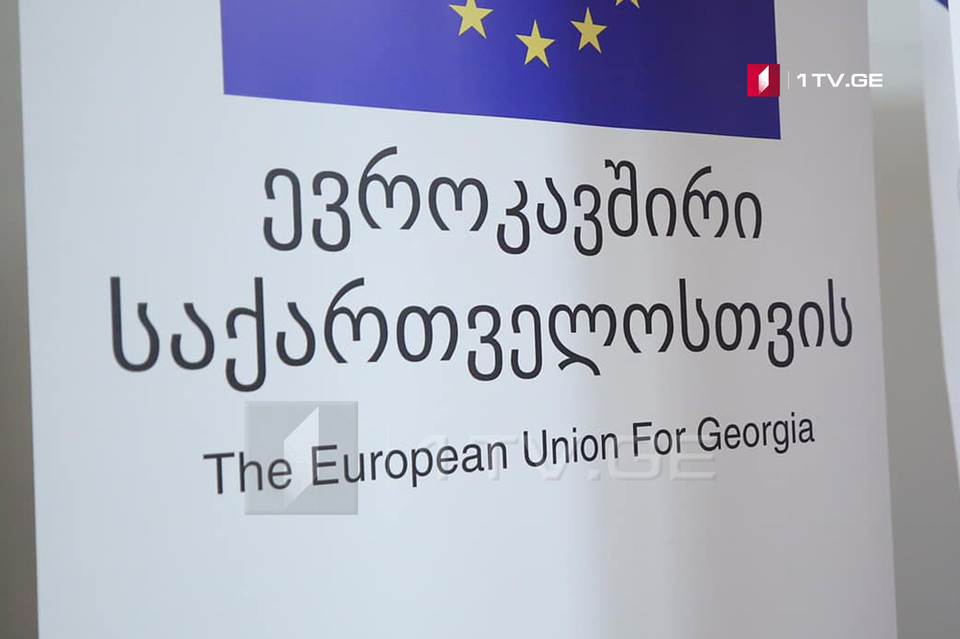 ევროკავშირის წარმომადგენლობა ადამიანის უფლებათა დღესთან დაკავშირებით განცხადებას ავრცელებს
