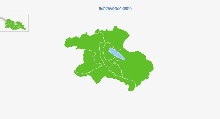 ЦИК Грузии опубликовала предварительные данные по мажоритарным округам в Тбилиси