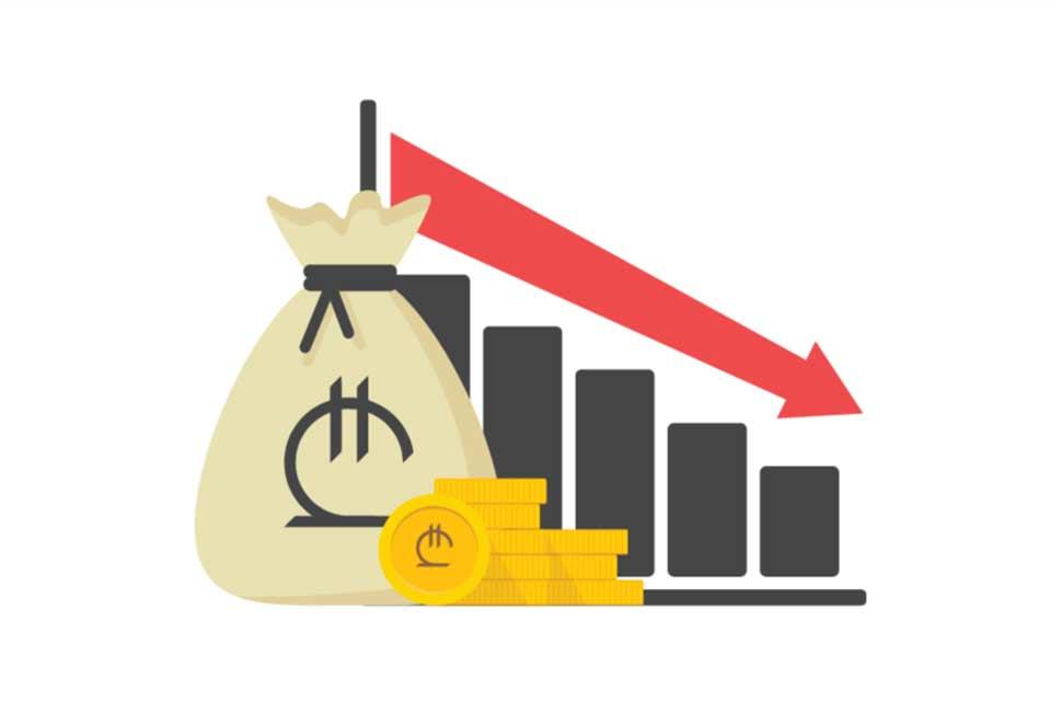 ბიზნესპარტნიორი - ლარის გაუფასურება და ბიზნესის მოლოდინი