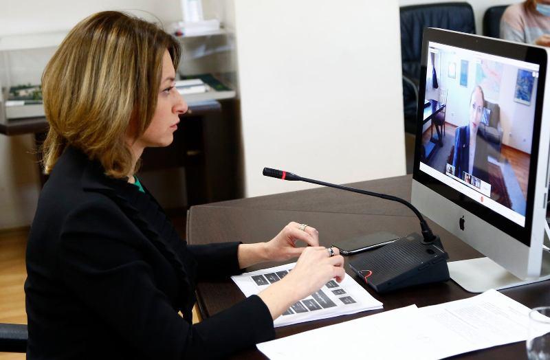 Էկատերինե Տիկարաձեի և Վրաստանում ԱՄՆ-ի դեսպանի միջև կայացել է առցանց հանդիպում