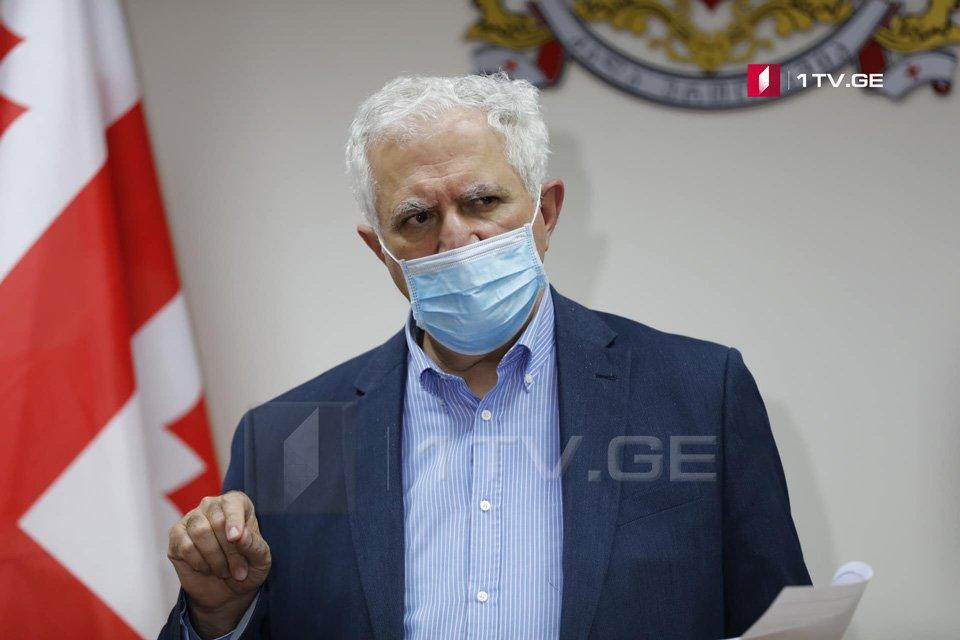 Քաղաքական գործընթացները պետք է ենթարկվեն համավարակի կառավարմանը, Աջարիայում ընթացող ցույցերը անպատասխանատվություն են. Ամիրան Գամղրելիձե