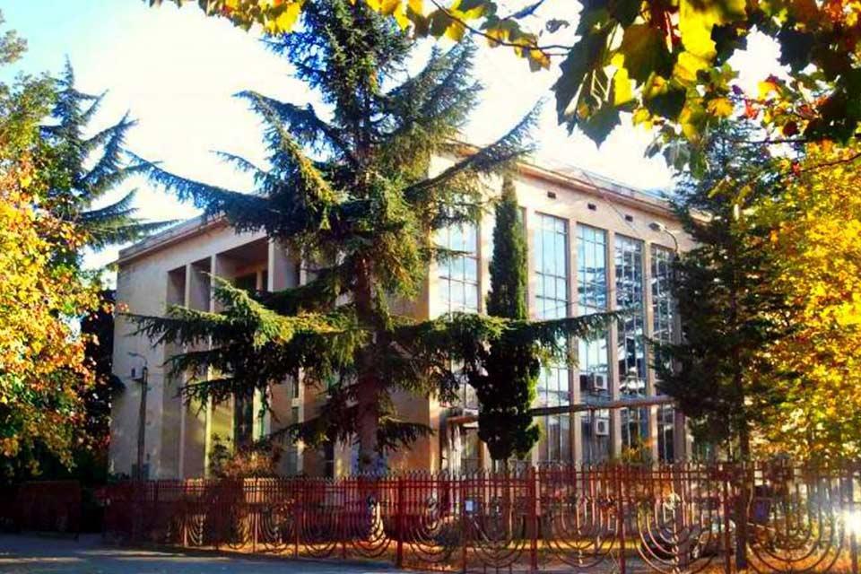 #სახლისკენ - საქართველოს ეროვნული სამეცნიერო ბიბლიოთეკის საქმიანობა