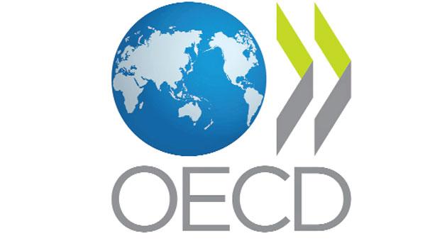 """საქართველო, როგორც OECD-ის არაწევრი ქვეყანა, პირველად უხელმძღვანელებს """"დასაბეგრი ბაზის შემცირებისა და მოგების გადატანის აღკვეთის მიზნით"""" მომუშავე საერთაშორისო კონფერენციას"""