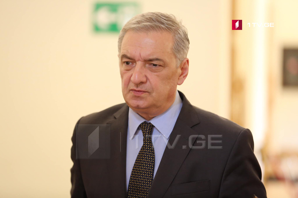 Parliament Vice Speaker: Democratic institutions develop in Georgia