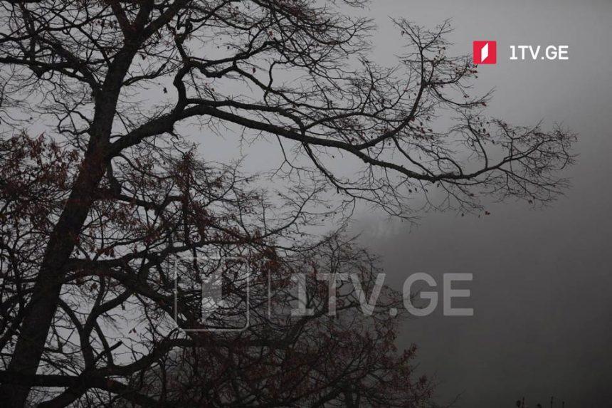 С 7 марта в Грузии погода ухудшится