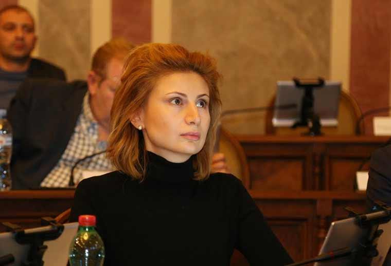 MP Talishvili: Opposition remarks on EU, US Ambassadors mismatch Georgian policy