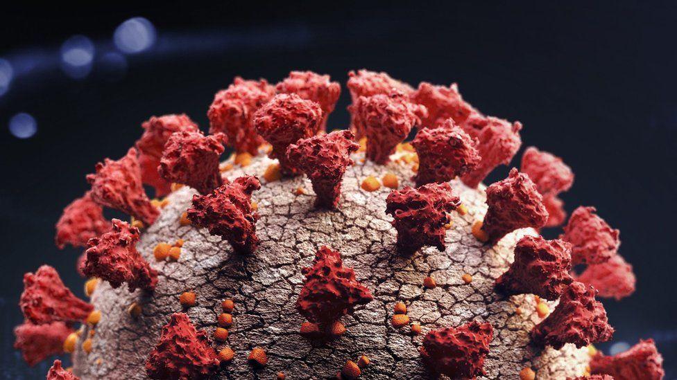გაერთიანებულ სამეფოში კორონავირუსის ახალი სახეობა აღმოაჩინეს