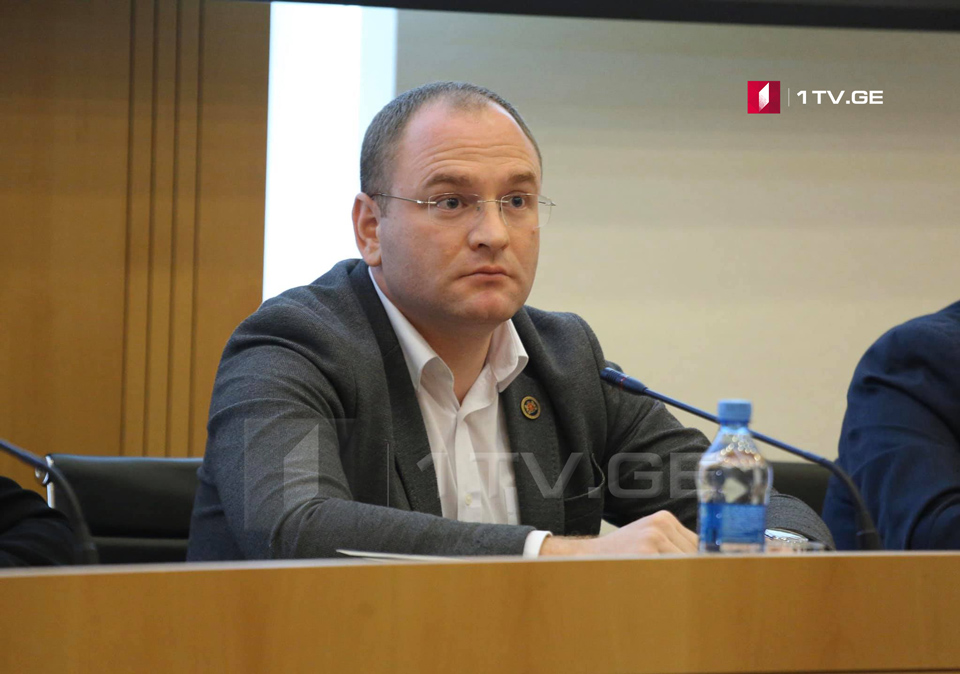 Georgian Parliament: Russia's aggressive actions problem for civilized world