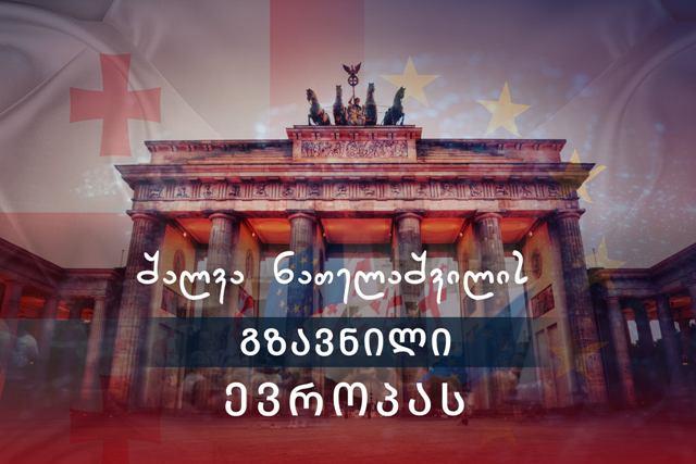 Обращение Шалвы Нателашвили к Европе
