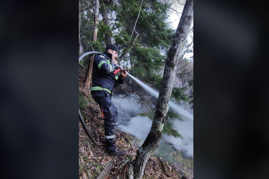 საგანგებო სიტუაციების მართვის სამსახური - მეხანძრე-მაშველებმა ღამის განმავლობაში ტყისა და მინდვრის ორი ხანძარი ჩააქრეს
