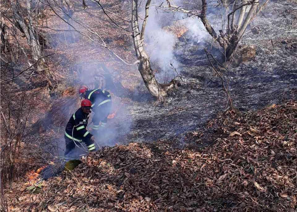 საქართველოში ტყის და მინდვრის ხანძრები ლიკვიდირებულია