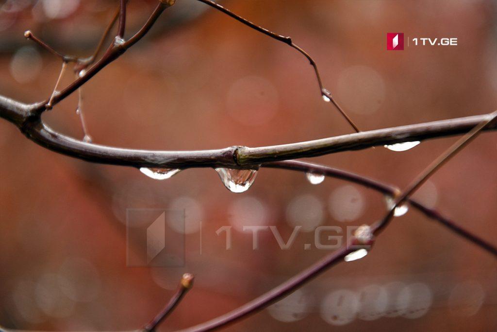 2-3 სექტემბერს საქართველოში წვიმა, ელჭექი და ძლიერი ქარია მოსალოდნელი