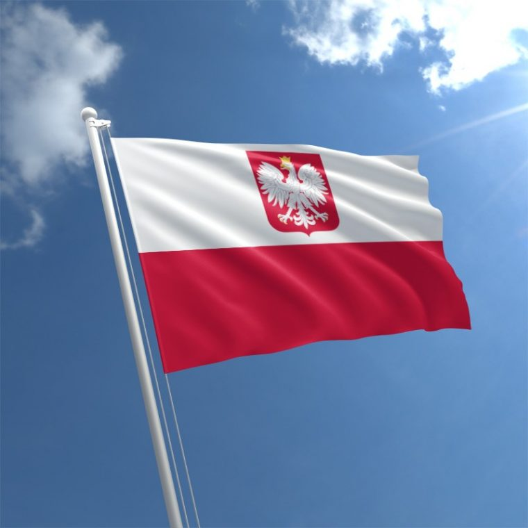 Representation of Poland to NATO to support Georgia's reforms and territorial integrity