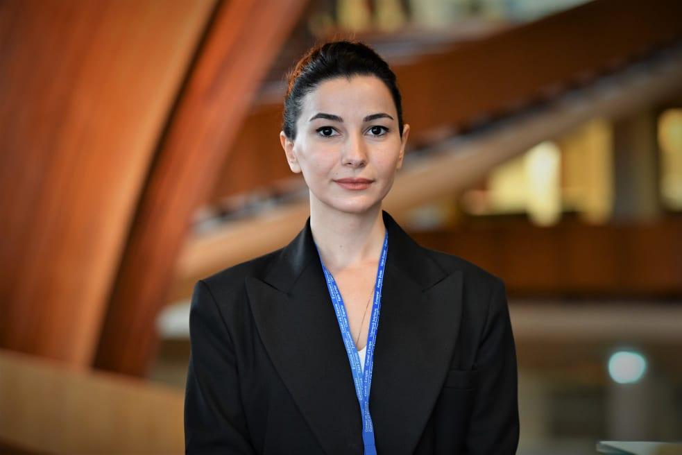 მარიამ ქვრივიშვილი - ჩვენ გამოვიყენეთ მნიშვნელოვანი საერთაშორისო პლატფორმა, რათა სწრაფად და სრულფასოვნად შესრულდეს რუსეთისთვის დაკისრებული ვალდებულებები