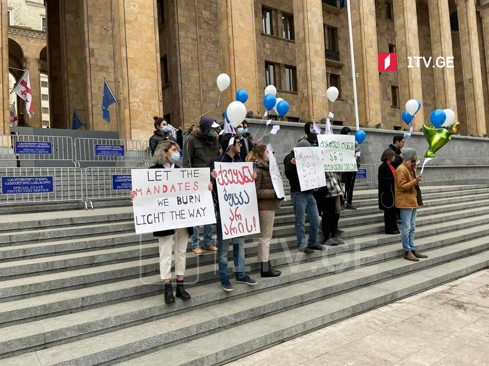 European Georgia youth wing rallies in front of parliament