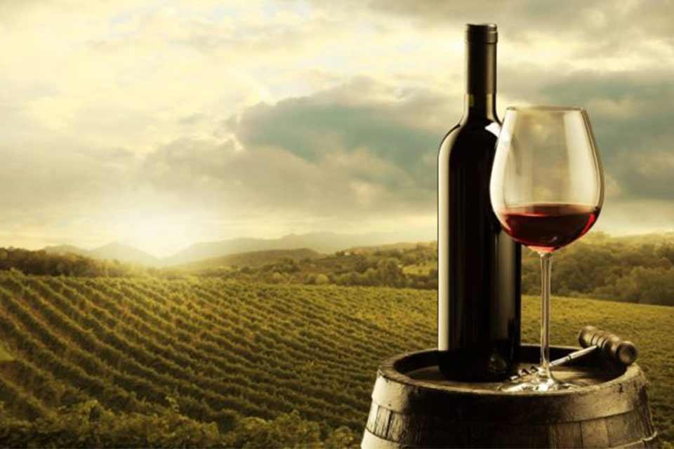 ბიზნესპარტნიორი - ღვინის ხარისხზე კონტროლი მკაცრდება