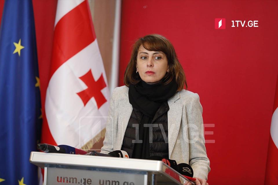 Грузинская оппозиция перенесла акцию 25 февраля