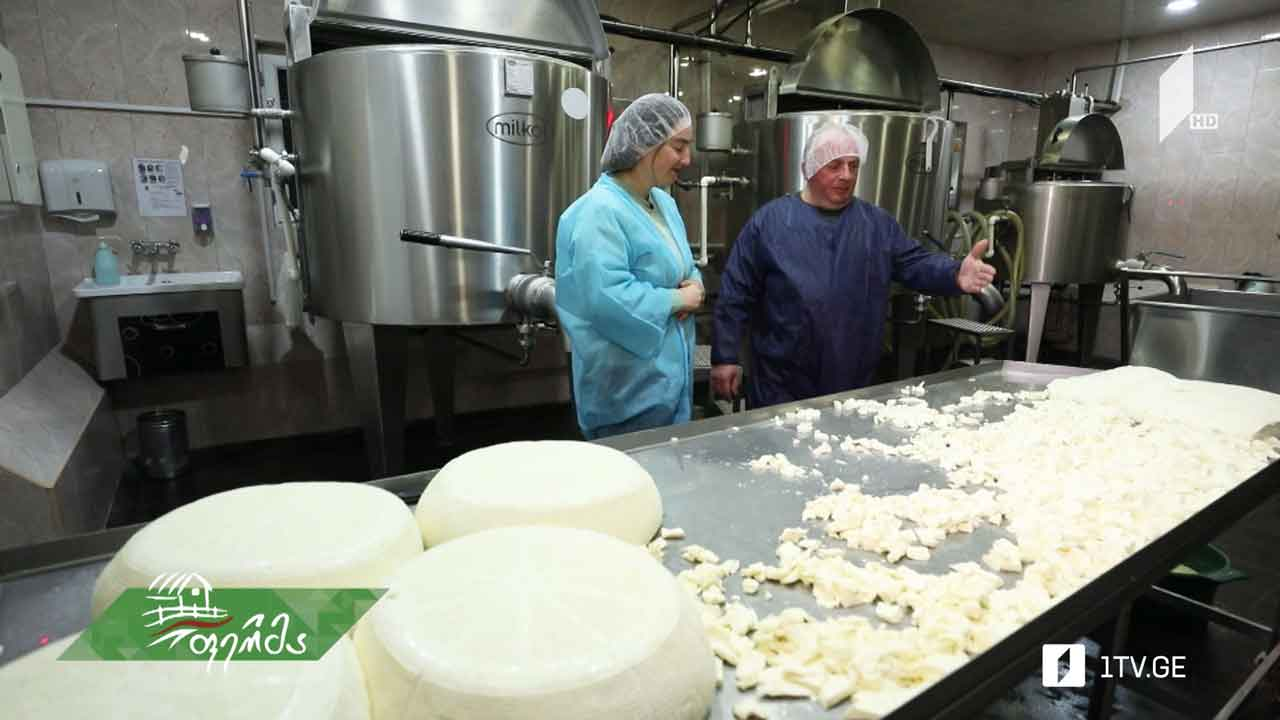 თანამედროვე ტექნოლოგიით აღჭურვილი რძის საწარმო ბოლნისში