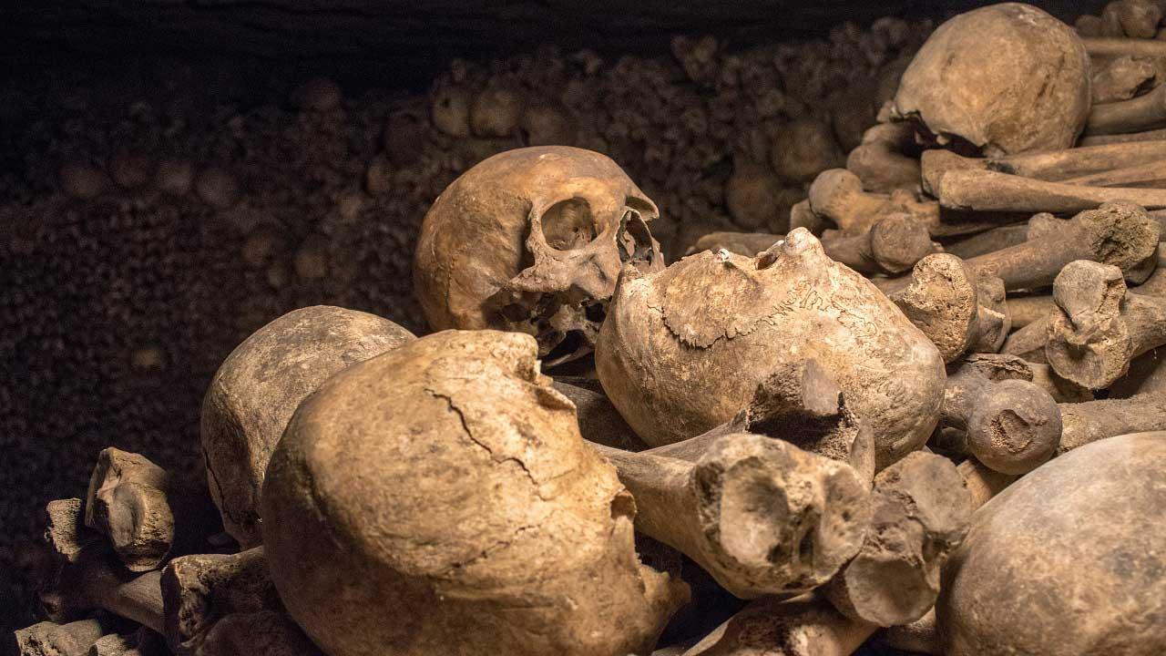 ათასობით ადამიანის ძვლები კაცობრიობასა და დაავადებებს შორის გაჩაღებულ ევოლუციურ ომზე მიუთითებს — #1tvმეცნიერება