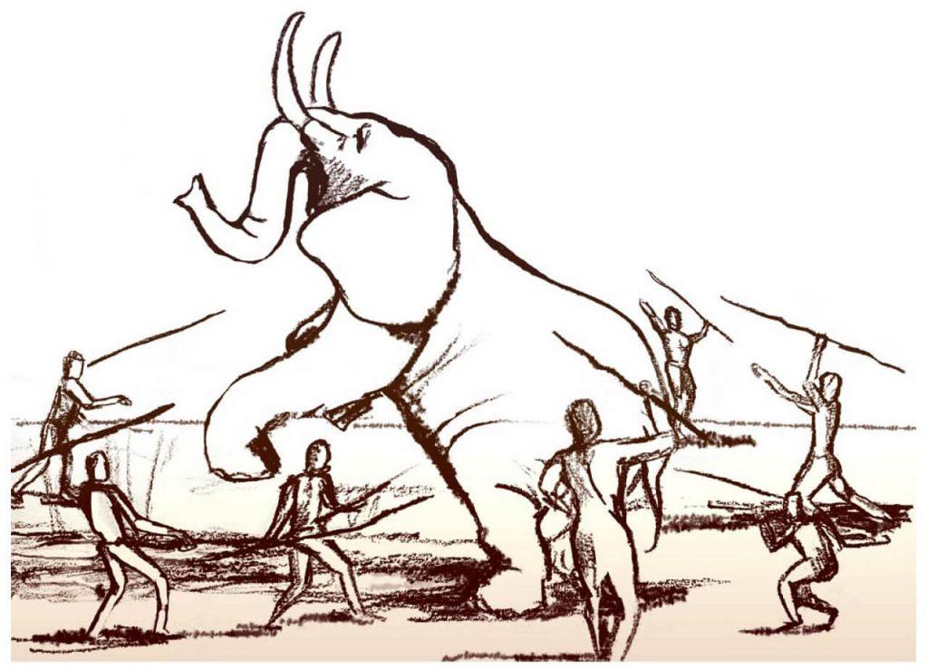 ადამიანის თავის ტვინის ზომის გაზრდა დიდი ცხოველების გადაშენებამ განაპირობა — ახალი კვლევა #1tvმეცნიერება