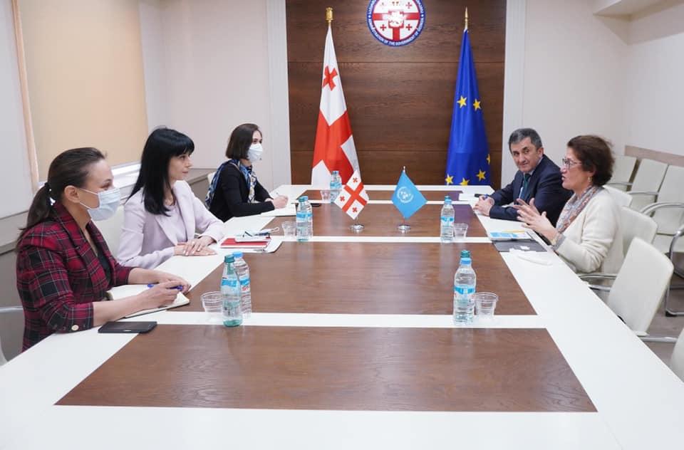 სახელმწიფო მინისტრმა, თეა ახვლედიანმა ჟენევის საერთაშორისო მოლაპარაკებებში გაერო-ს წარმომადგენელთან შეხვედრა გამართა