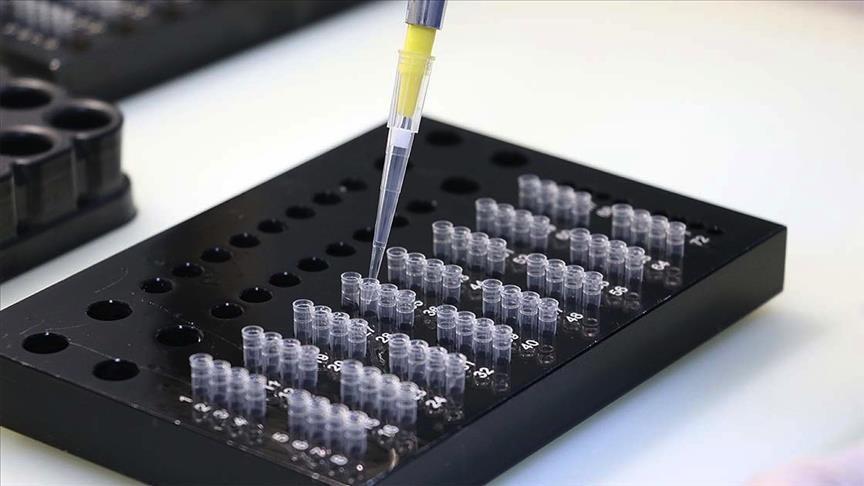 В Азербайджане выявили 1 759 новых случаев коронавируса