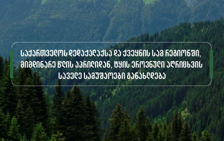 აპრილიდან თბილისსა და სამ რეგიონში ტყის ეროვნული აღრიცხვის საველე სამუშაოები განახლდება