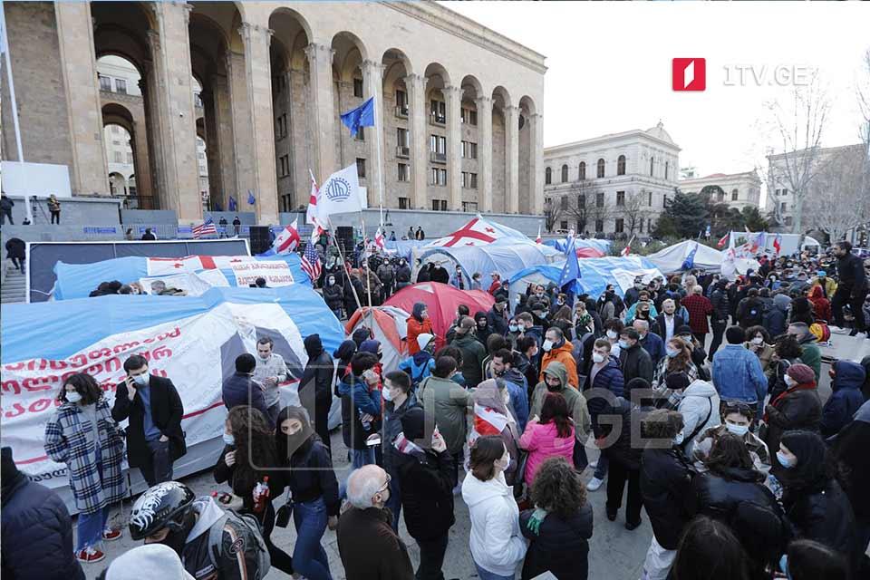Противники ограничения на передвижение в ночное время проводят митинг перед зданием парламента Грузии