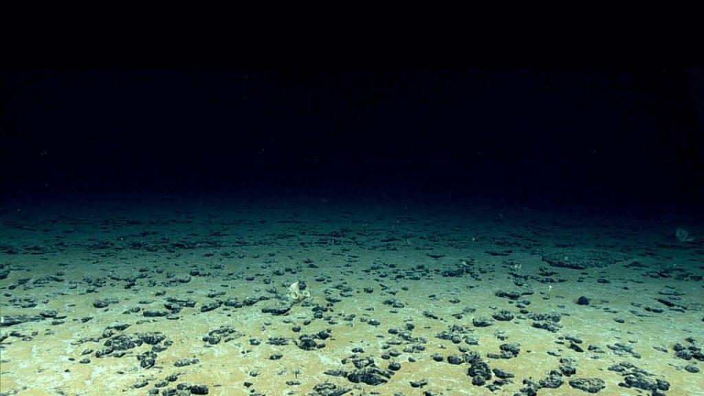 შავი ზღვის ღრმა ნაწილებში ბოლო გამყინვარების ხანა ჯერაც არ დასრულებულა — ახალი კვლევა #1tvმეცნიერება