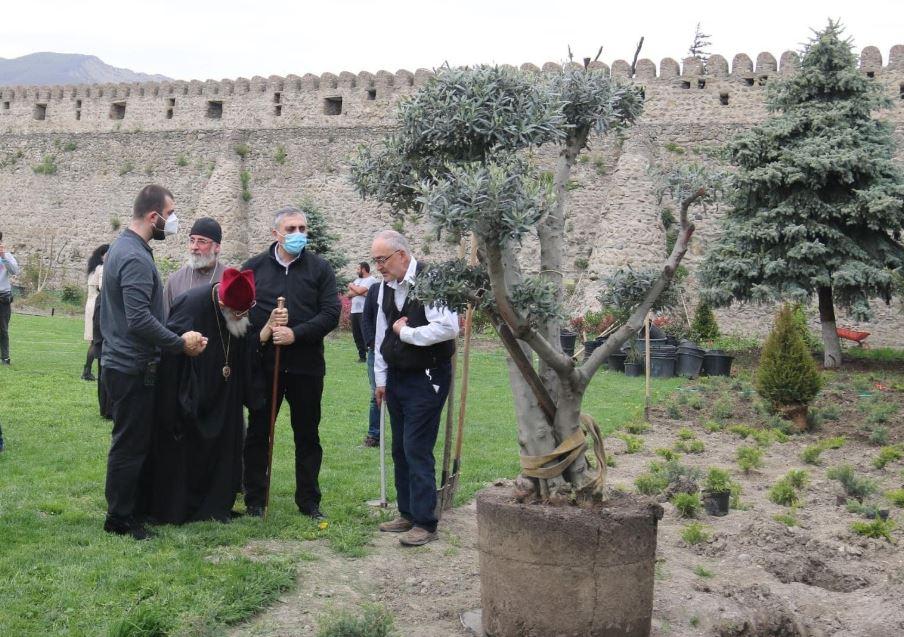 ილია მეორემ სვეტიცხოვლის საკათედრო ტაძრის ეზოში გამწვანების ღონისძიებაში მიიღო მონაწილეობა