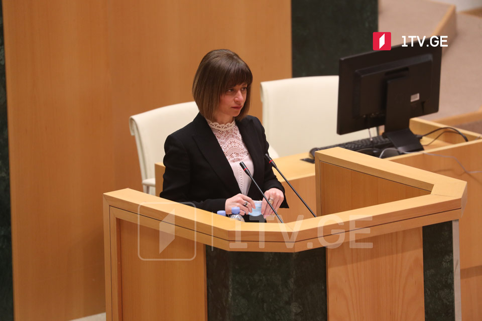 Georgian Health Minister presents annual report