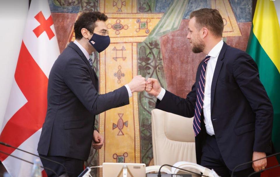 Председатель парламента Грузии Каха Кучава встретился с министром иностранных дел Литвы