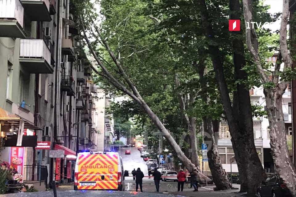 თბილისში, კავსაძის ქუჩაზე ხე წაიქცა