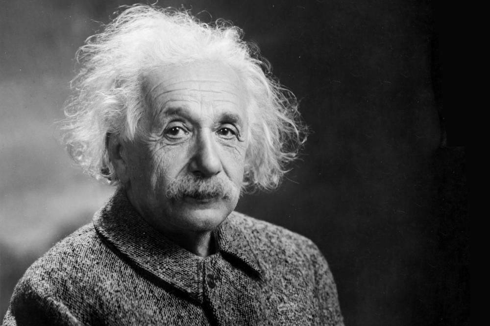 აღმოჩენილია წერილი, რომელშიც აინშტაინი ცხოველთა სუპერ შეგრძნებების აღმოჩენას პროგნოზირებდა — #1tvმეცნიერება