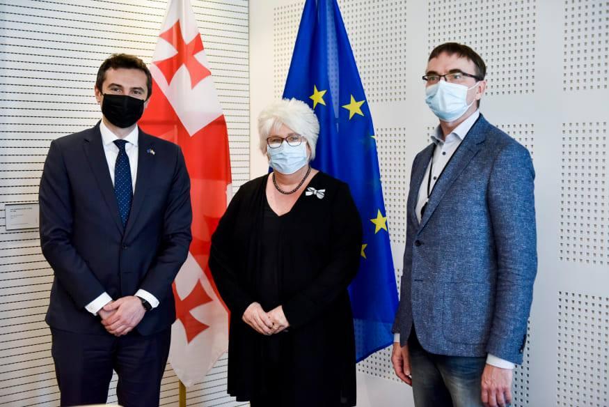 კახა კუჭავა - ევროპარლამენტარებს იმედი აქვთ, რომ პოლიტიკოსები შევძლებთ, ვისაუბროთ და გადავჭრათ პრობლემები საპარლამენტო ფორმატში