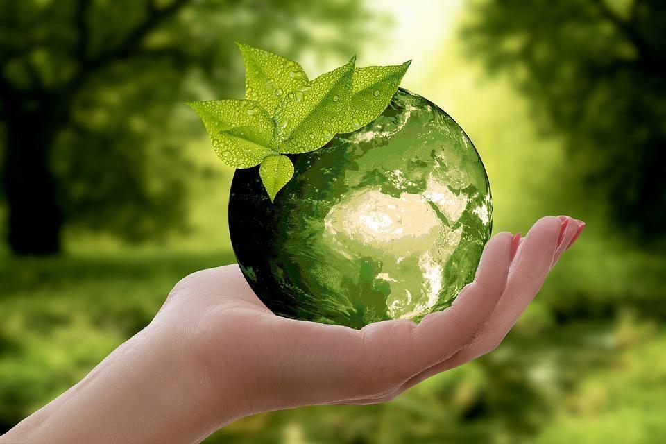 ჩაი ორისთვის - გარემოს მსოფლიო დღე