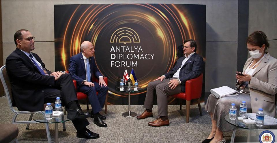 Давид Залкалиани и Дмитрий Кулеба обсудили вопросы сотрудничества на пути интеграции в НАТО и ЕС