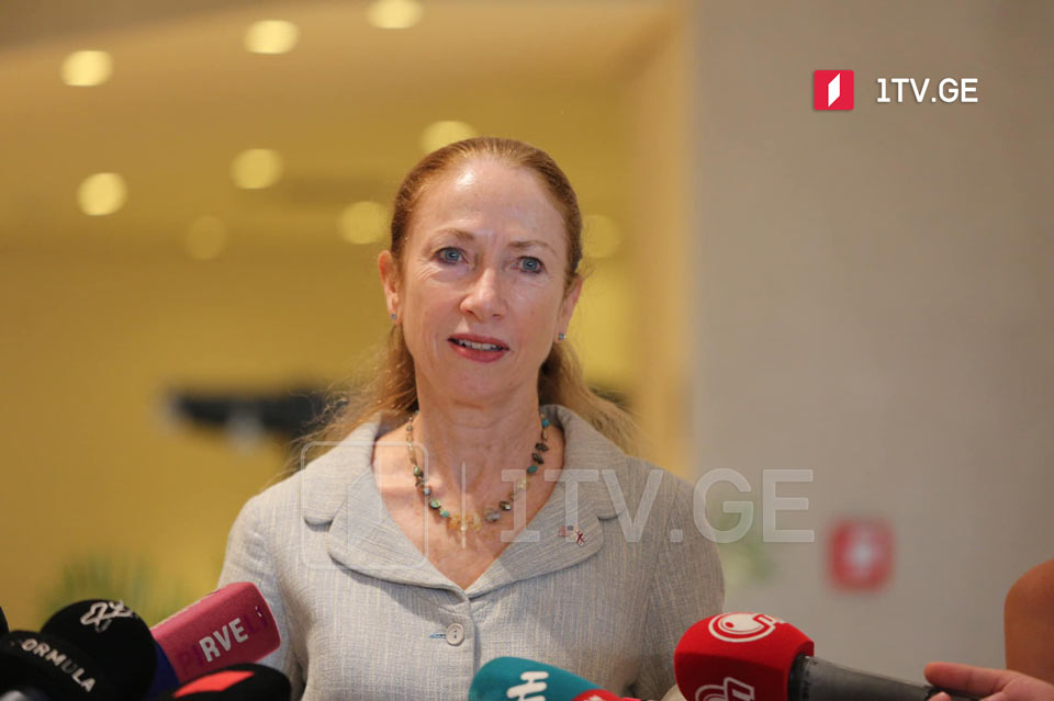 Rule of law and impartial judiciary to be prerequisite for joining NATO, EU, Ambassador Degnan says