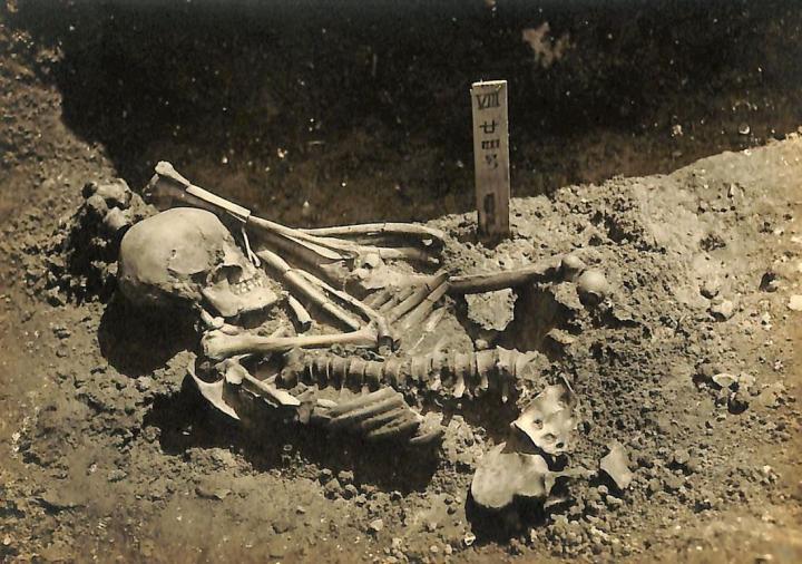 აღმოჩენილია კაცის ჩონჩხი, რომელიც 3000 წლის წინ გახდა ზვიგენის მსხვერპლი – #1tvმეცნიერება