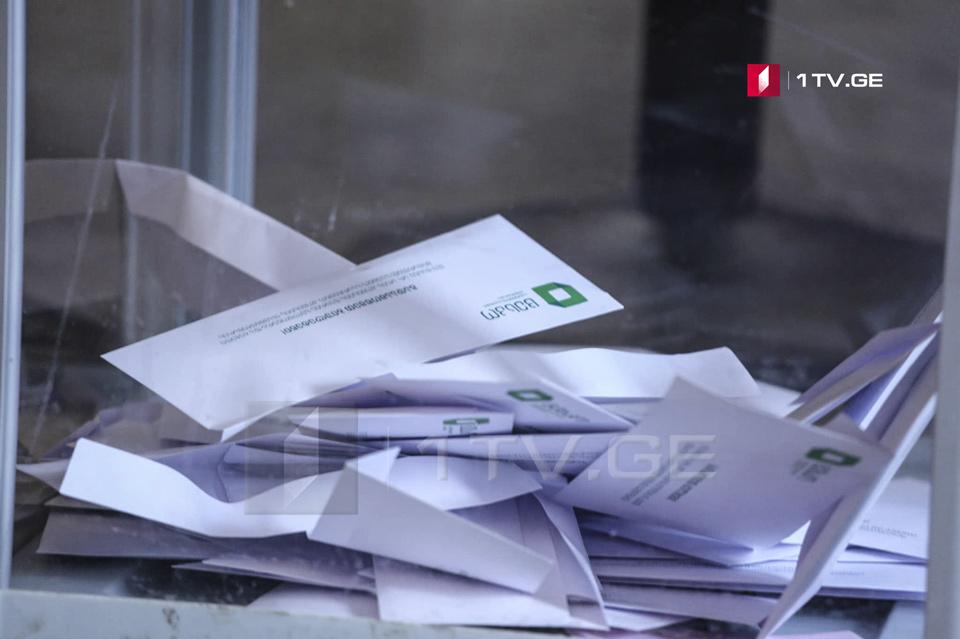 Georgian politicians argue election delay idea