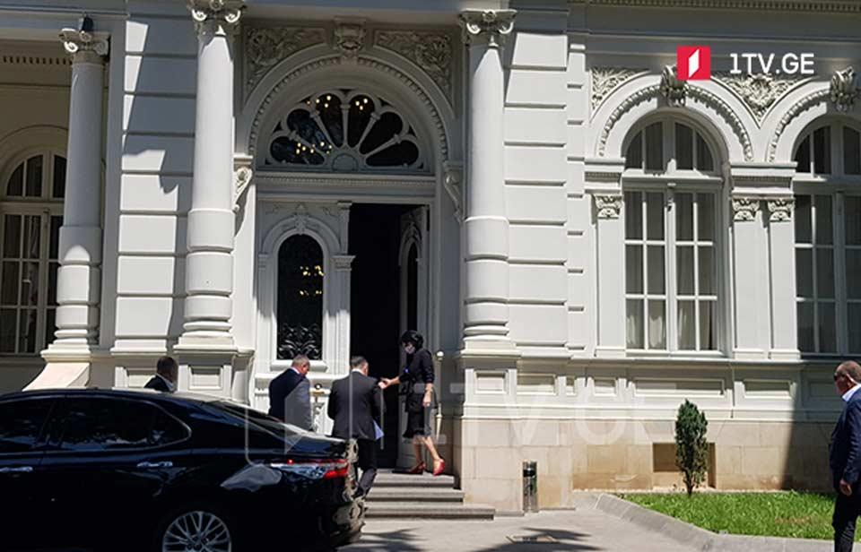Вахтанг Гомелаури проводит встречу с президентом во дворце Орбелиани