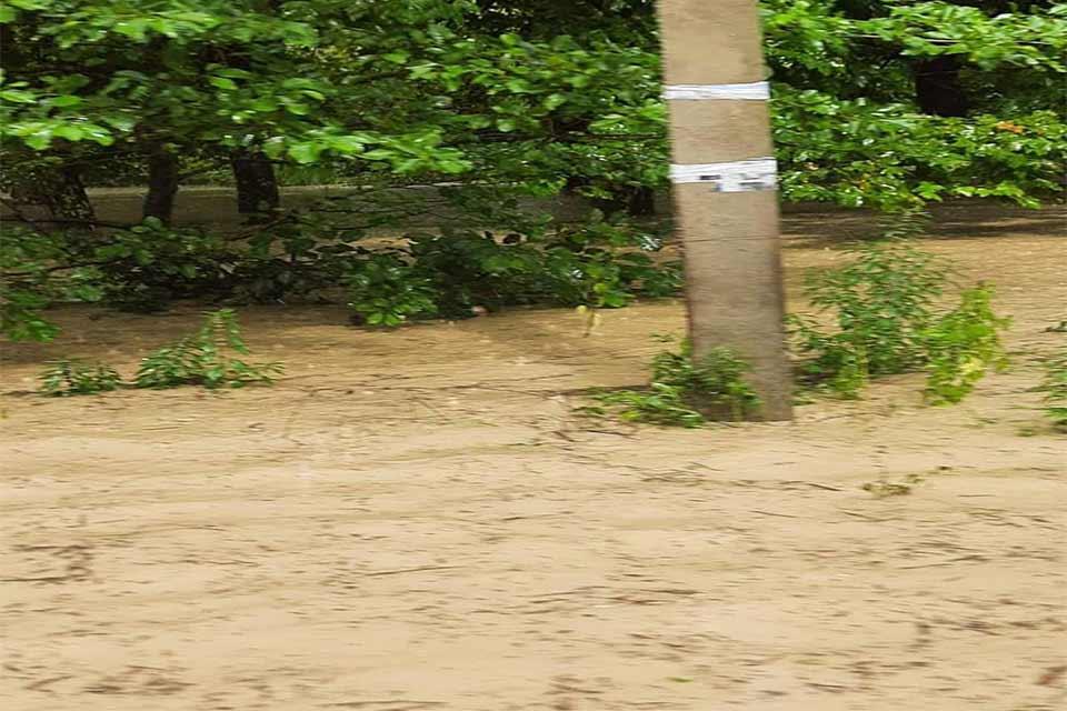ძლიერი წვიმის შედეგად ხობის რამდენიმე სოფელში საცხოვრებელი სახლის ეზოები და სასოფლო-სამეურნეო სავარგულები დაიტბორა