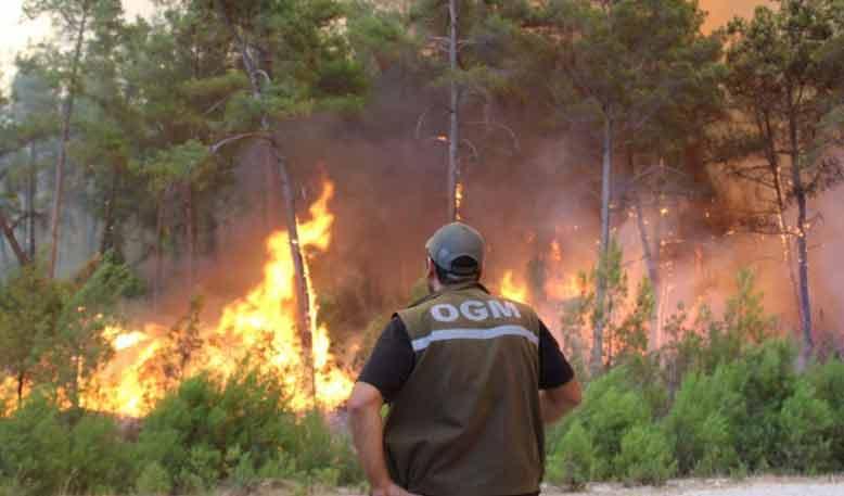 თურქეთში ტყის ხანძრების შედეგად გარდაცვლილთა რაოდენობა ექვსამდე გაიზარდა