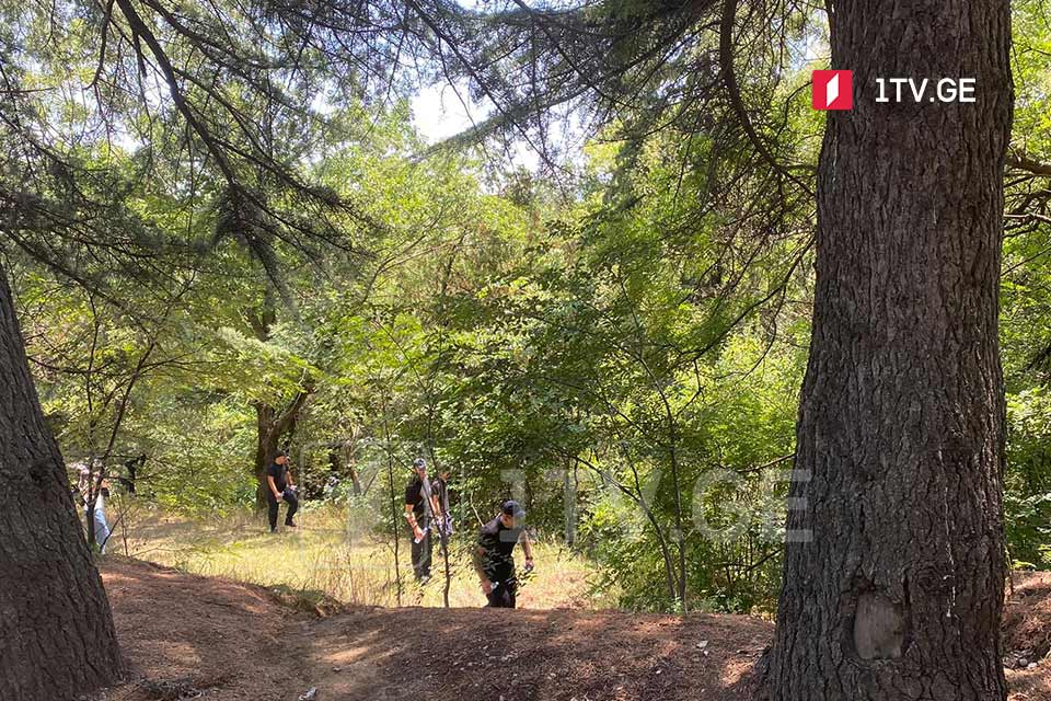 Спасатели нашли тело погибшей женщины на территории Тбилисского парка Мтацминда
