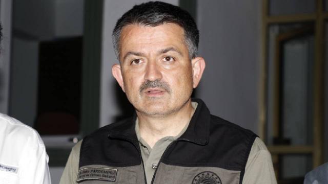 თურქეთის სოფლის მეურნეობის მინისტრის განცხადებით, ქვეყნის 44 პროვინციაში 197 ტყის ხანძრიდან 186 კონტროლის ქვეშაა მოქცეული