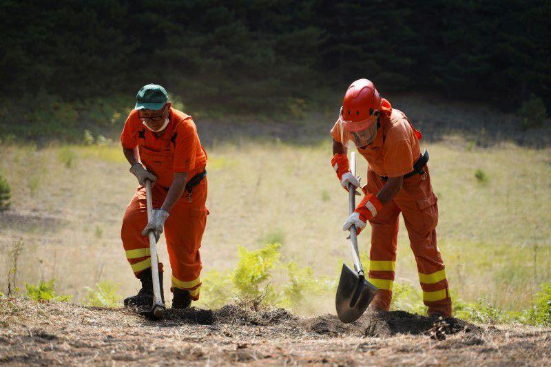 ტყის ხანძრის შედეგად, სამხრეთ იტალიაში ერთი ადამიანი დაიღუპა